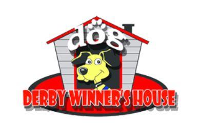 Jasa Penitipan Anjing Derby Winner Kelapa Gading