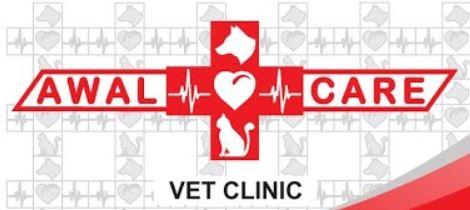Klinik Dokter Hewan Awal Care Vet Clinic